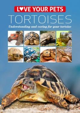 Love Your  Pets Series - Tortoises
